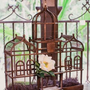 Antique Bird Cage, Antique Venue Decorations