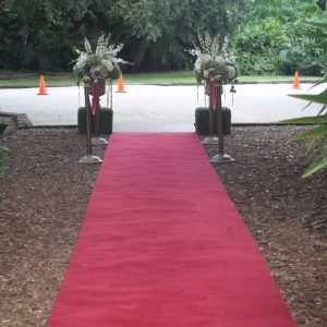 Red Ropes and Stanchions Rental